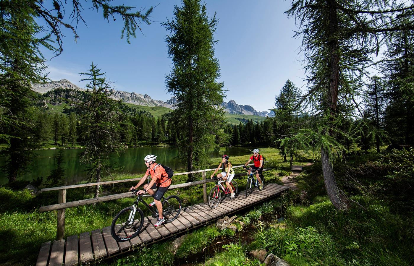 Cycling tourists enjoy a bike ride surrounded by nature